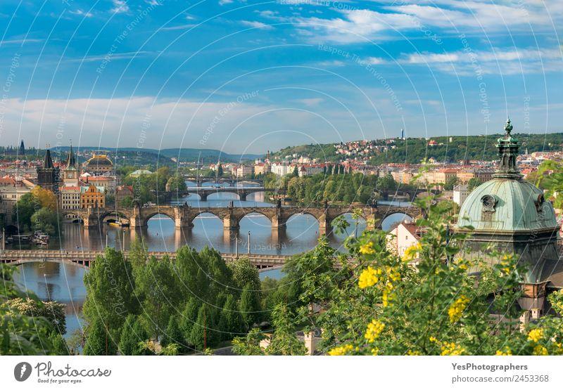 Ferien & Urlaub & Reisen Sommer schön grün Landschaft Baum Blume Architektur Gebäude Kunst gold Europa Schönes Wetter Brücke Sehenswürdigkeit Wahrzeichen