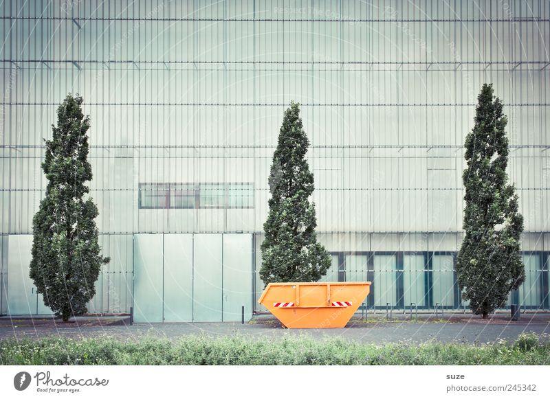 Museum der bildenden Künste grün Stadt Baum Wiese Fenster Gebäude Kunst orange Fassade Ordnung hoch Wachstum trist Wandel & Veränderung Kultur Bauwerk