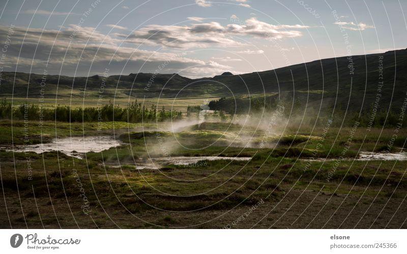 HOT POT Natur Pflanze Wasser Landschaft Wolken Tier Berge u. Gebirge Wärme Gras Schwimmen & Baden Felsen Nebel Idylle Erde Sträucher Hügel