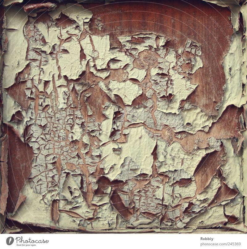 Lackbrand Fenster Tür Holz alt trashig trist braun weiß Nostalgie Verfall Vergangenheit Vergänglichkeit kaputt wellig Brand Farben und Lacke Schutzschicht
