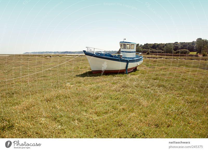 Auf dem Trockenen Fischer Fischerboot Fischereiwirtschaft Wasserfahrzeug Schifffahrt Natur Landschaft Sommer Strand Bretagne liegen braun grün weiß stagnierend
