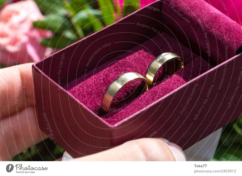 Hochzeitsringe Frau Erwachsene Metall Gold Zeichen Liebe rosa ästhetisch Ehering Schmuck Ring Farbfoto Menschenleer