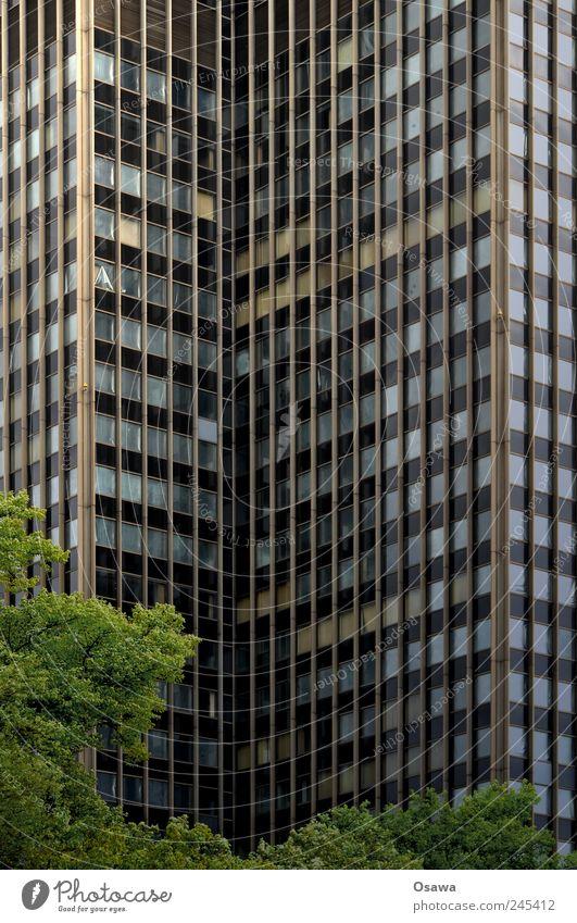 Berlin Steglitz Kreisel Hochhaus Fassade Fenster Glas Gebäude Bürogebäude Baum Blatt grün grau Menschenleer Architektur
