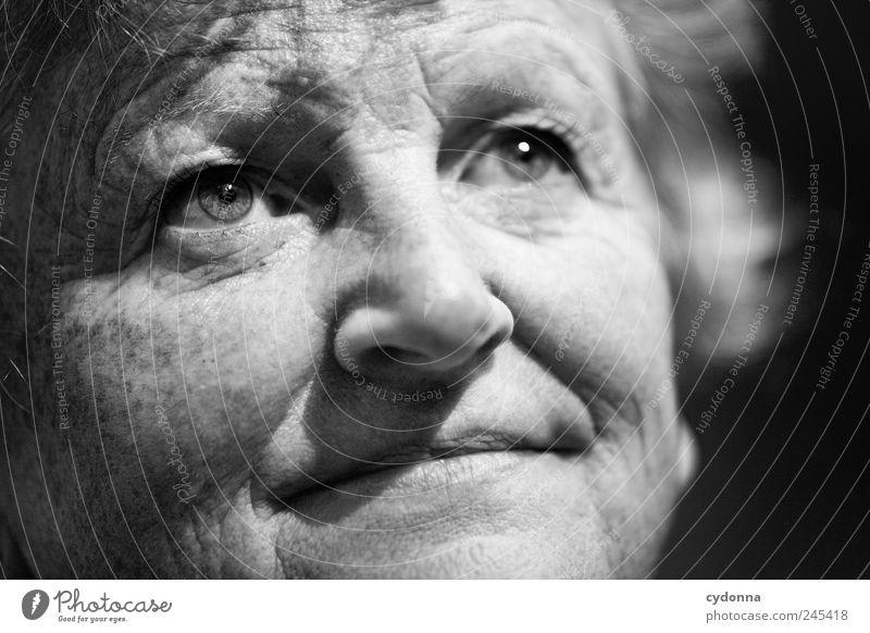 Erfahrung Mensch Frau schön Gesicht Erwachsene Leben Senior Freiheit träumen Zeit Zufriedenheit Haut Lifestyle Sicherheit einzigartig Vergänglichkeit