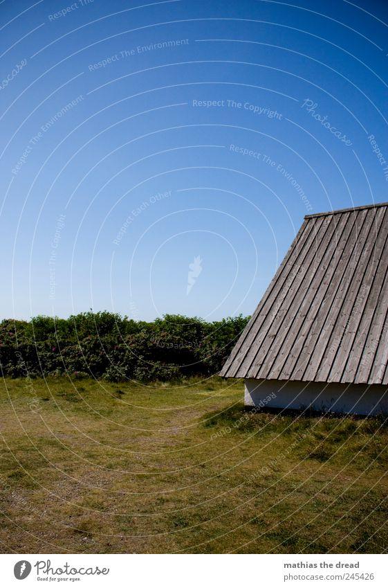 DÄNEMARK - II Umwelt Natur Landschaft Luft Wolkenloser Himmel Horizont Sommer Schönes Wetter Pflanze Baum Gras Sträucher Dorf Menschenleer Haus Einfamilienhaus