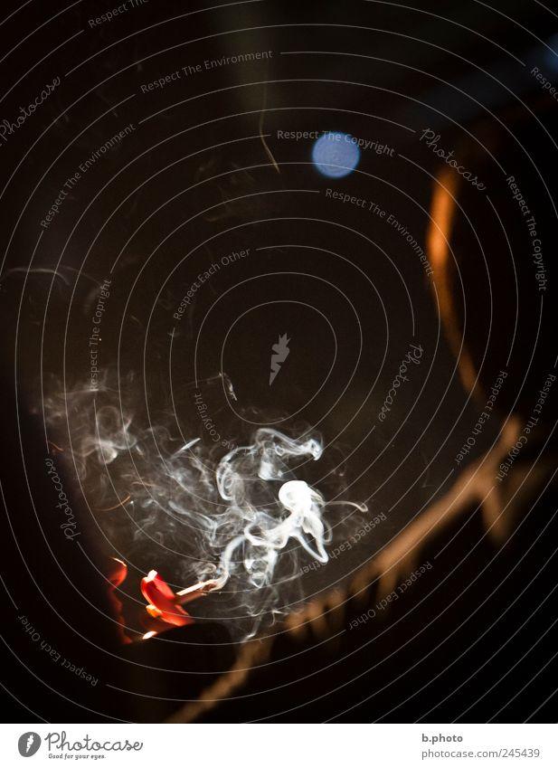smokin Mensch Erwachsene Kraft elegant Finger ästhetisch Rauchen genießen Zigarette Leichtigkeit Lust Lichtspiel Nachtleben Rauchwolke Rauchpause