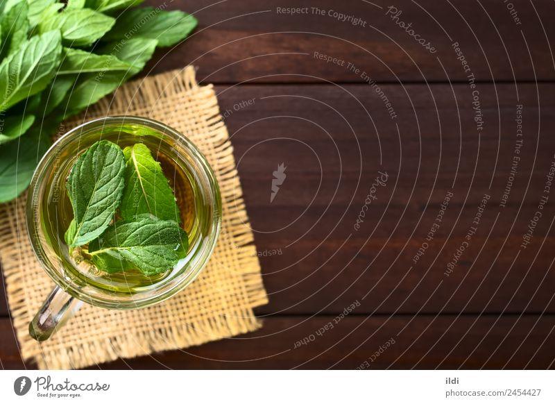 Frischer Minze Kräutertee Kräuter & Gewürze Getränk Tee Blatt frisch Gesundheit heiß natürlich grün Kräuterbuch trinken Erfrischung Krause Minze aromatisch