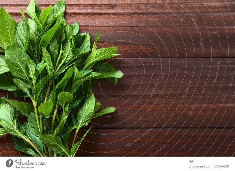 Pflanze grün Blatt natürlich frisch Kräuter & Gewürze Tee Alternativmedizin aromatisch roh Bündel Minze duftig