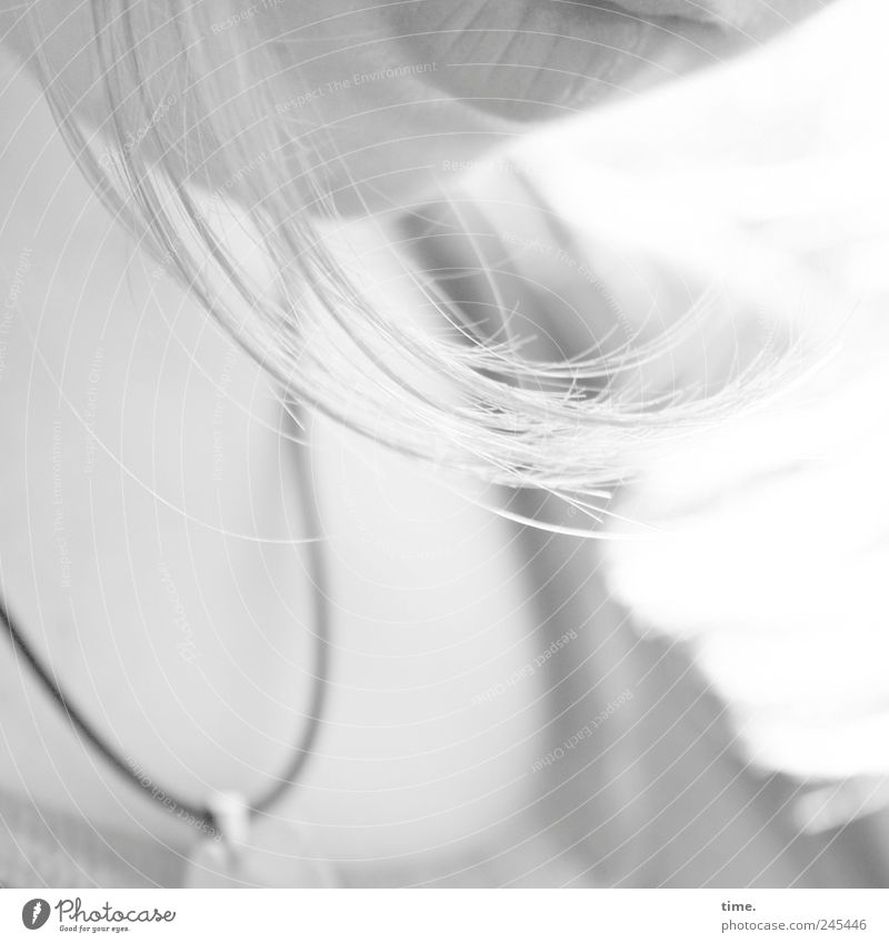 versunken Mensch Jugendliche schön ruhig feminin Haare & Frisuren Traurigkeit Denken Mund T-Shirt nachdenklich zart Konzentration Halskette Schwung Kinn