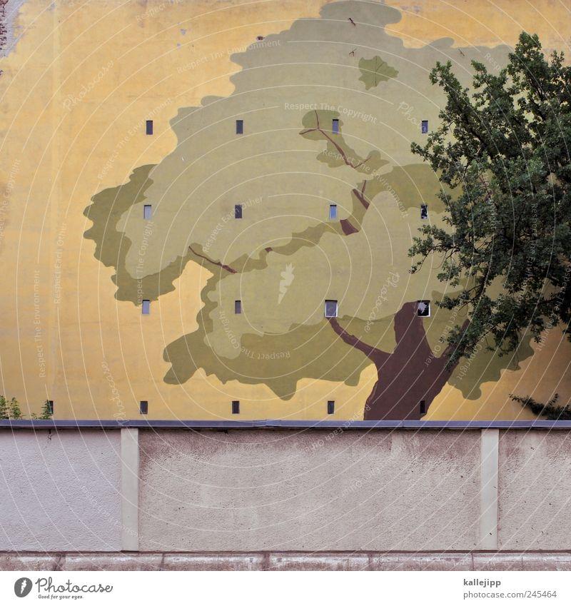 baumhaus Natur Baum Pflanze Blatt Fenster Wand Umwelt Garten Mauer Park Fassade Wachstum Gemälde Kunstwerk Kultur Blätterdach