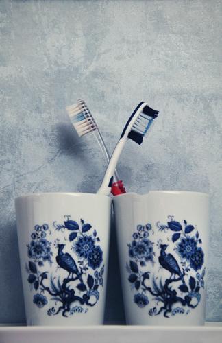Symmetrie sucks blau Paar 2 Vogel Zusammensein Ordnung Bad Tapete trashig Verliebtheit kreuzen gleich Pfau Körperpflegeutensilien Zahnbürste Porzellan