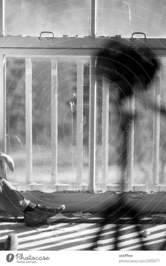 James Dean Mensch alt Hand Haus Erwachsene Fenster Fuß maskulin Fotokamera