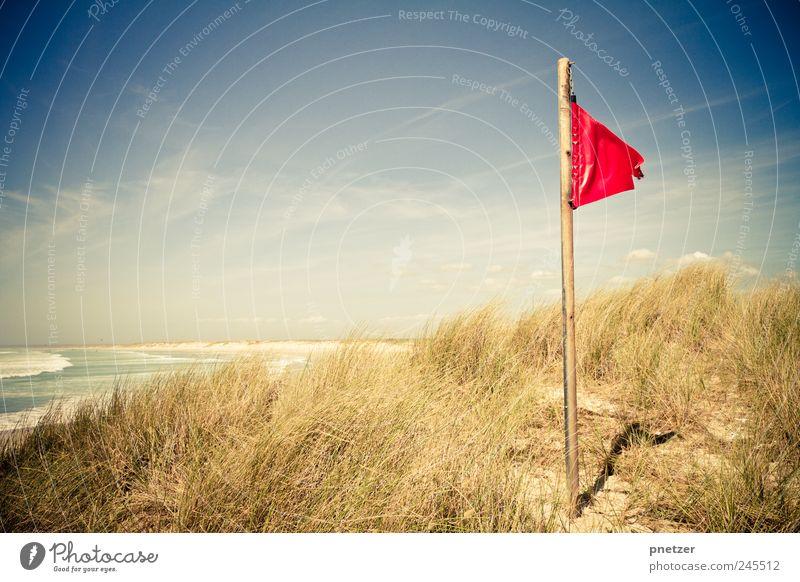 Sturm Umwelt Natur Urelemente Wasser Himmel Sommer Klima Klimawandel Wetter Schönes Wetter Gras Wellen Küste Bucht Meer Atlantik Strand schön Gefühle Stimmung