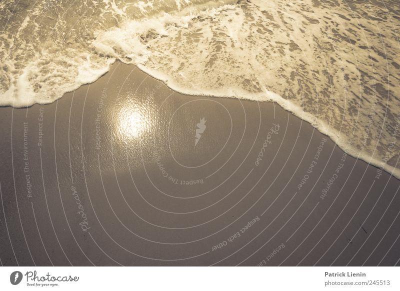 California Dreaming Natur Wasser Sonne Sommer Strand Ferien & Urlaub & Reisen Meer Ferne Freiheit Umwelt Küste Wellen Erde Freizeit & Hobby Ausflug Insel