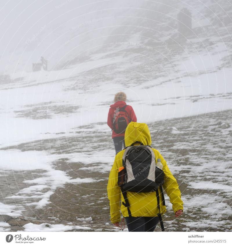 Schnee - das ist doch der Gipfel! Mensch Natur Schnee Berge u. Gebirge Eis Nebel wandern Felsen Frost bedrohlich Alpen Sturm schlechtes Wetter vermummt Schneebedeckte Gipfel