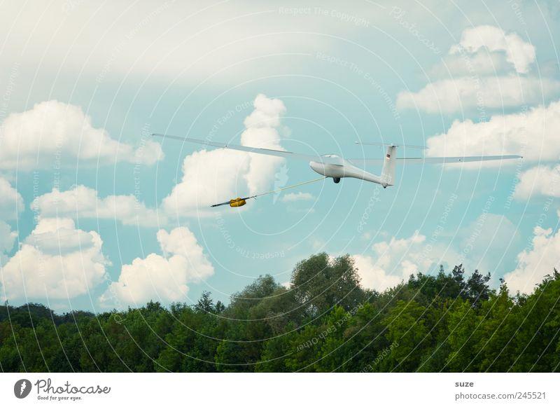 Gleitzeit Freiheit Luftverkehr Umwelt Himmel Wolken Klima Schönes Wetter Wind Sportflugzeug Segelflugzeug fliegen Freundlichkeit hell blau weiß Segelfliegen
