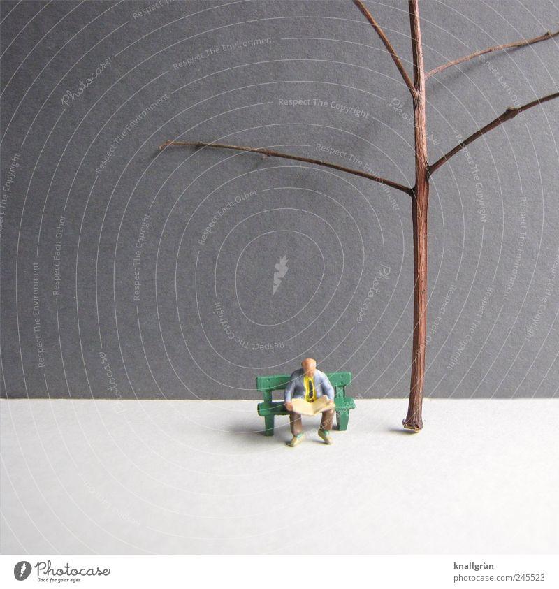 Rentnerdasein Mensch maskulin Mann Erwachsene Männlicher Senior 1 60 und älter Baum Bank Parkbank Zeitung Erholung festhalten lesen sitzen frei braun grau grün