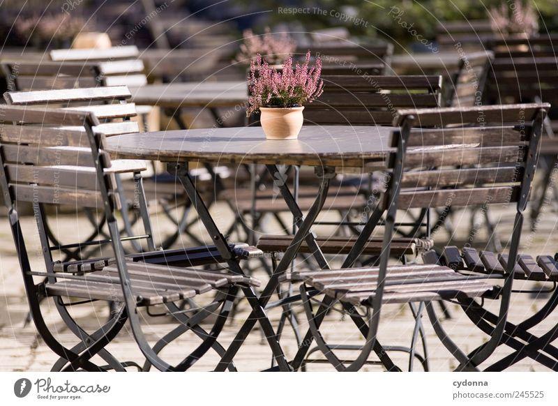 Platz an der Sonne Natur Pflanze Sommer ruhig Einsamkeit Erholung Leben Freiheit träumen Zeit Ausflug leer Tisch Lifestyle Pause einzigartig