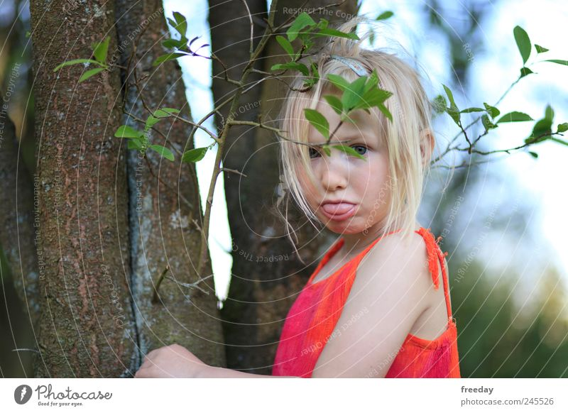 :P Kind Natur schön Baum rot Mädchen Blatt Gesicht Wald Gefühle Haare & Frisuren Garten Park Kindheit Mund Sträucher