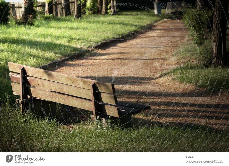 Eckbank ruhig Garten Wiese Wege & Pfade Holz braun grün Frieden Pause Ziel Bank Friedhof Holzbank Zaun geheimnisvoll Farbfoto Gedeckte Farben Außenaufnahme