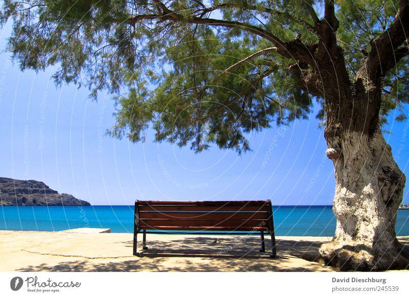 Lieblingsplatz blau Wasser Ferien & Urlaub & Reisen grün Baum Pflanze Sommer Meer Strand ruhig Erholung Ferne Landschaft Küste Horizont Insel
