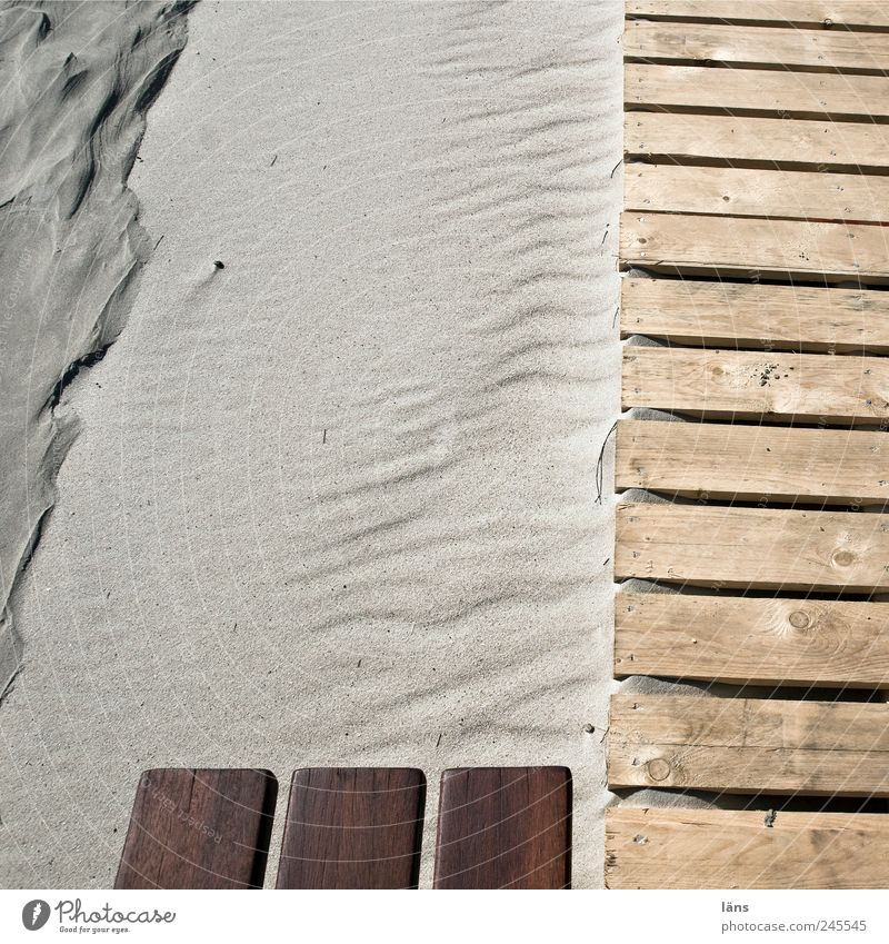 Spiekeroog | edel und... Strand Holz Landschaft Wege & Pfade Sand Umwelt braun Steg Holzbrett