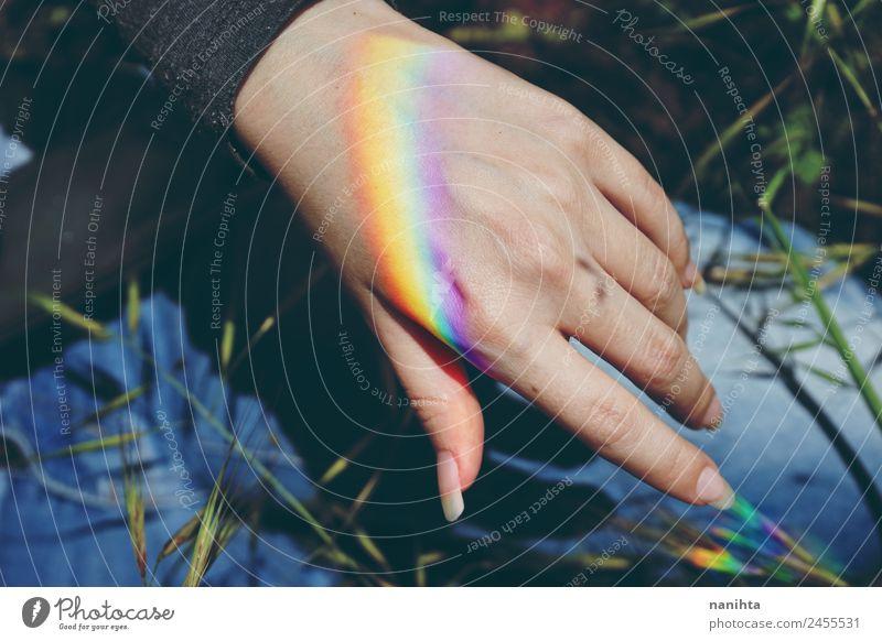 Frauenhand mit einem darin projizierten Regenbogen Stil Design feminin Erwachsene Hand Natur Pflanze Klima Wetter Schönes Wetter ästhetisch authentisch einfach