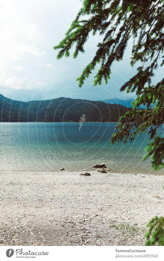 Unbelievably beautiful crystal clear mountain lake in the alps Natur Landschaft Wasser Alpen Gebirgssee Klarheit Badesee See Berge u. Gebirge Nadelwald