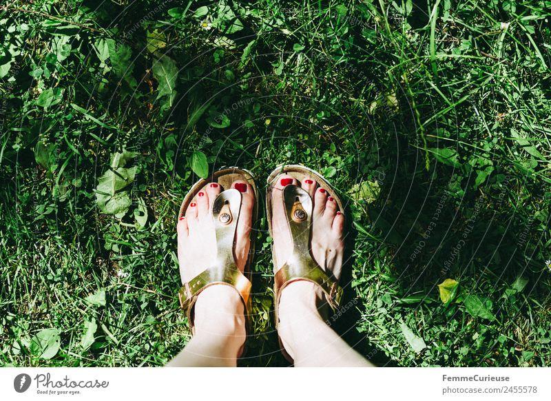 Feet of a woman wearing sandals Fuß Freizeit & Hobby Sandale Schlappen glänzend Rasen Wiese Nagellack Sonnenstrahlen Sommer sommerlich Schuhe Garten Park