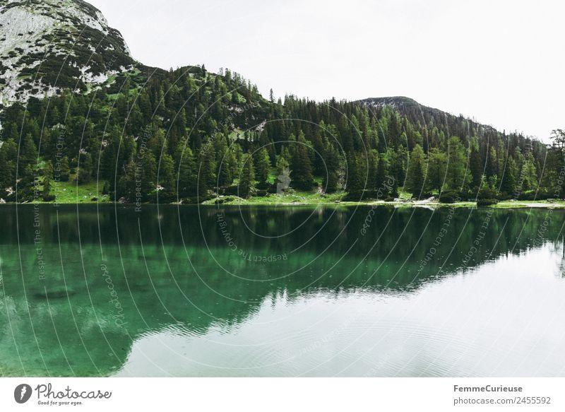 Beautiful cristal clear mountain lake in the alps Natur Landschaft Idylle Gebirgssee Alpen Berge u. Gebirge Nadelbaum Nadelwald Klarheit türkis See Farbfoto