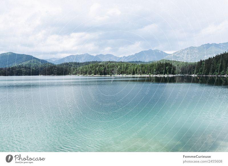 Mountain lake with cristal clear water in the alps Natur Klarheit türkis Nadelwald Alpen Berge u. Gebirge Sonnenstrahlen Sommer See Gebirgssee Farbfoto