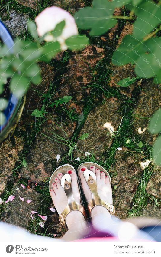 Feet of a woman wearing sandals feminin Junge Frau Jugendliche Erwachsene Fuß 1 Mensch 18-30 Jahre 30-45 Jahre ästhetisch Sandale glänzend Steinboden Garten