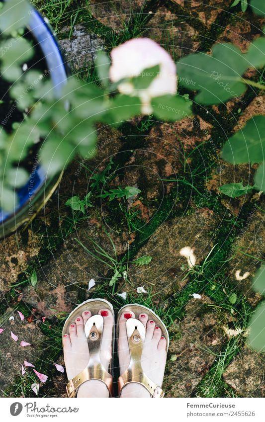 Woman in sandals standing in her garden feminin Junge Frau Jugendliche Erwachsene 1 Mensch 18-30 Jahre 30-45 Jahre Natur Sandale Schlappen glänzend Garten
