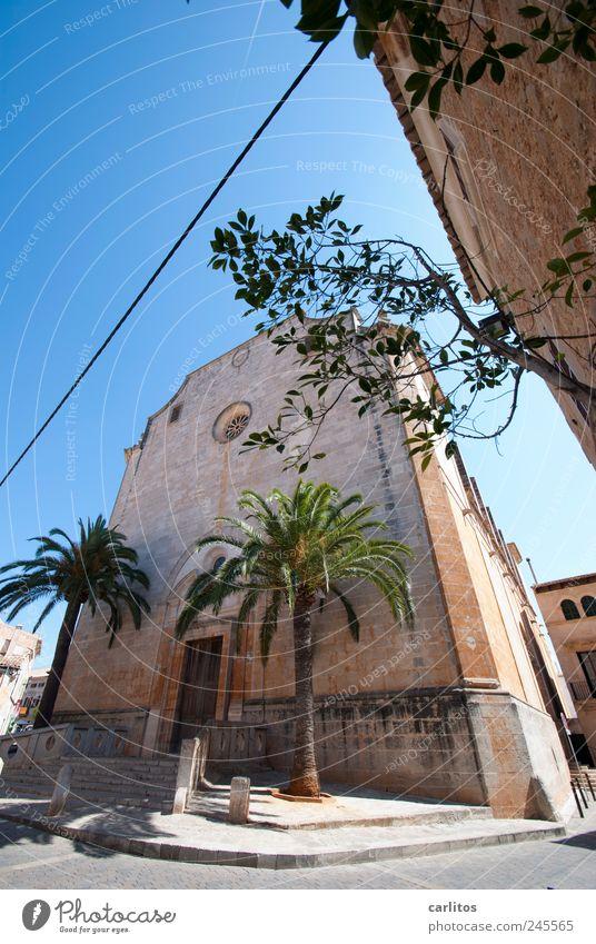 Sant Andreu Himmel Sommer Schönes Wetter Baum Palme Kleinstadt Stadtzentrum Kirche Gebäude Mauer Wand Fassade Sehenswürdigkeit alt ästhetisch historisch blau
