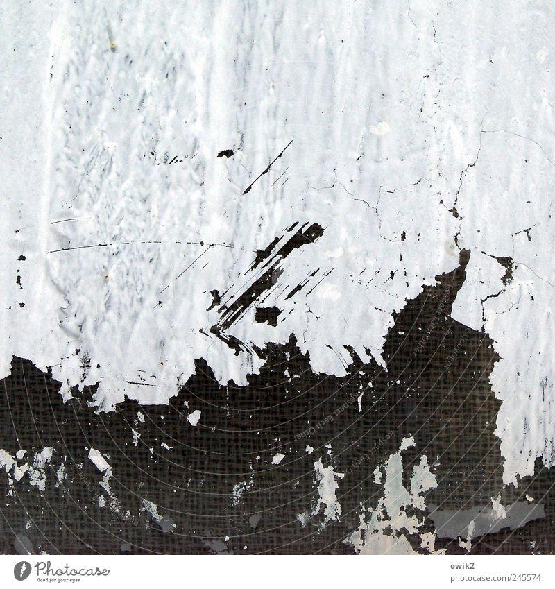 Gondwana weiß blau schwarz grau Farbstoff Kunst Glas ästhetisch modern natürlich wild außergewöhnlich Vergänglichkeit Spuren verfallen gruselig