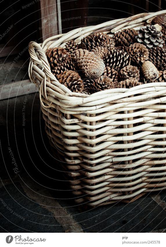 dekorb dunkel braun Dekoration & Verzierung trocken Griff Korb voll Tannenzapfen netzartig Naturmaterial