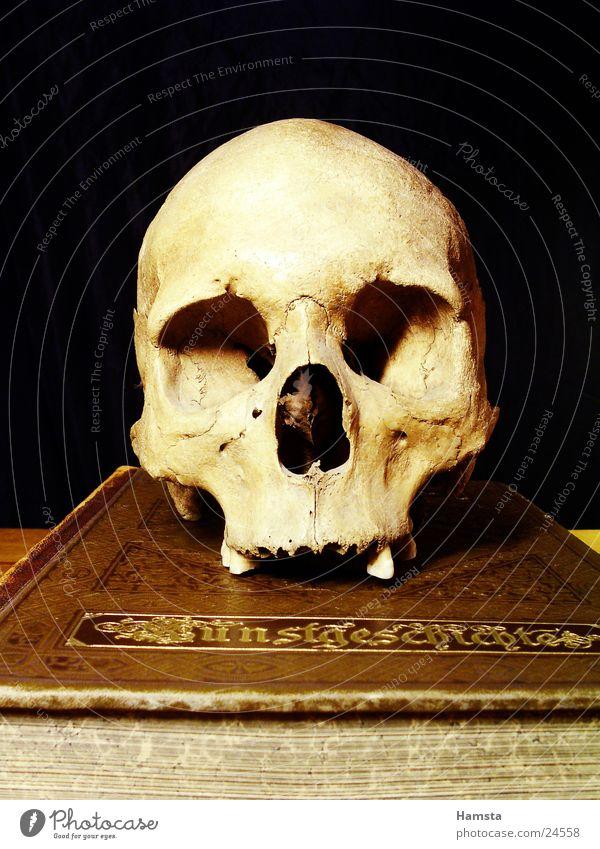 märchenstunde Buch Dinge Märchen mystisch antik obskur Schädel Hamlet Requisite Geister u. Gespenster Vergangenheit Gruseln