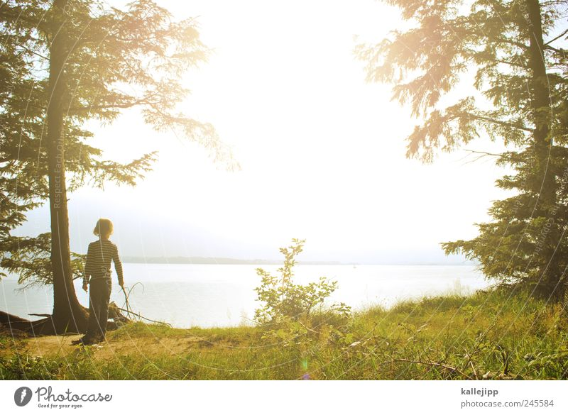 meilenweit Mensch Kind Himmel Natur Wasser Baum Sommer Umwelt Landschaft Junge Gras Küste Kindheit Horizont Ausflug wandern