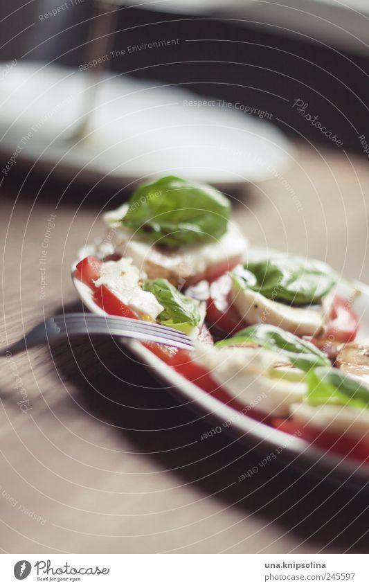 rot.weiß.grün Holz Gesundheit Lebensmittel frisch Ernährung Kräuter & Gewürze Gemüse lecker Geschirr Bioprodukte Teller Tomate Mittagessen