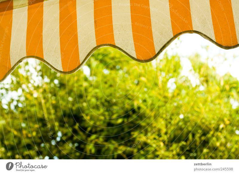 Markise Ferien & Urlaub & Reisen Garten Umwelt Natur Klima Klimawandel Wetter Schönes Wetter Zufriedenheit Schrebergarten wallroth Wetterschutz Sträucher