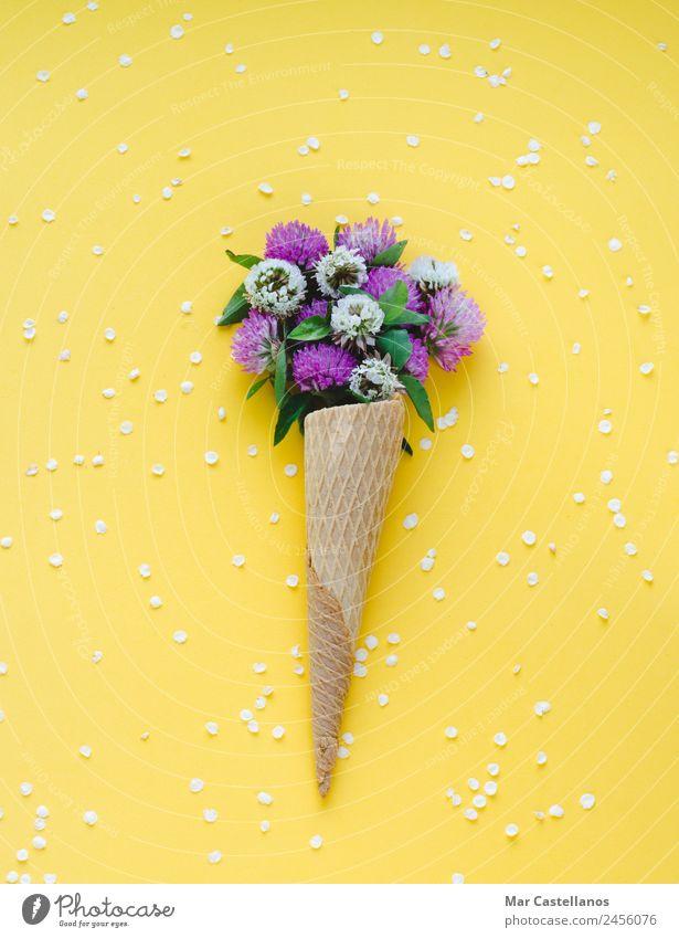 Eiscremekegel mit Blumen auf gelbem Hintergrund Kräuter & Gewürze schön Sommer Garten Kunst Pflanze Gras Blatt Blüte Blumenstrauß schreiben natürlich grün rot