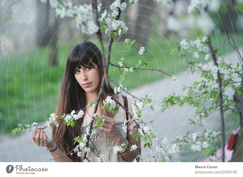 Frau Mensch Natur Ferien & Urlaub & Reisen Jugendliche Sommer Pflanze schön grün weiß Baum Blume Erholung Einsamkeit ruhig Ferne