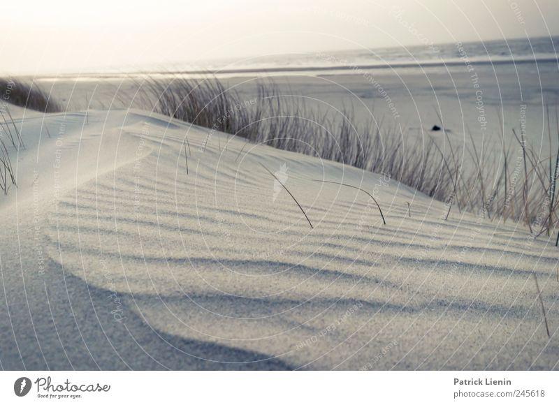 Spiekeroog | Beach of Joy * Himmel Natur Strand Ferien & Urlaub & Reisen Meer Einsamkeit Ferne Landschaft Umwelt Sand Küste Stimmung hell Wetter Erde