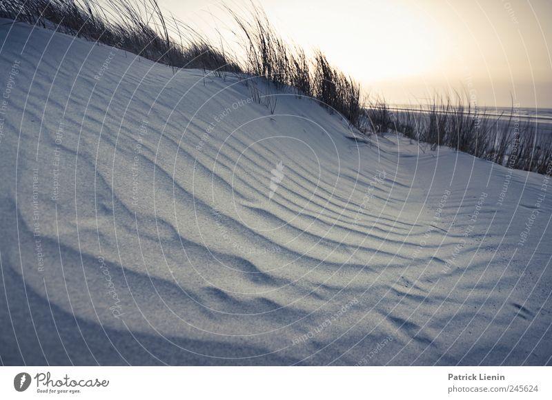Spiekeroog | Beach of Joy ° Himmel Natur Ferien & Urlaub & Reisen Meer Einsamkeit Ferne Freiheit Landschaft Umwelt Sand Küste Stimmung hell Wetter Erde