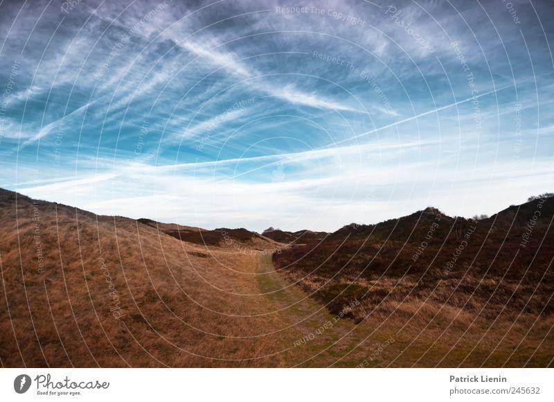 Spiekeroog | You are a tourist Himmel Natur blau Ferien & Urlaub & Reisen Pflanze Meer Wolken Ferne Umwelt Landschaft Freiheit braun Wetter Freizeit & Hobby