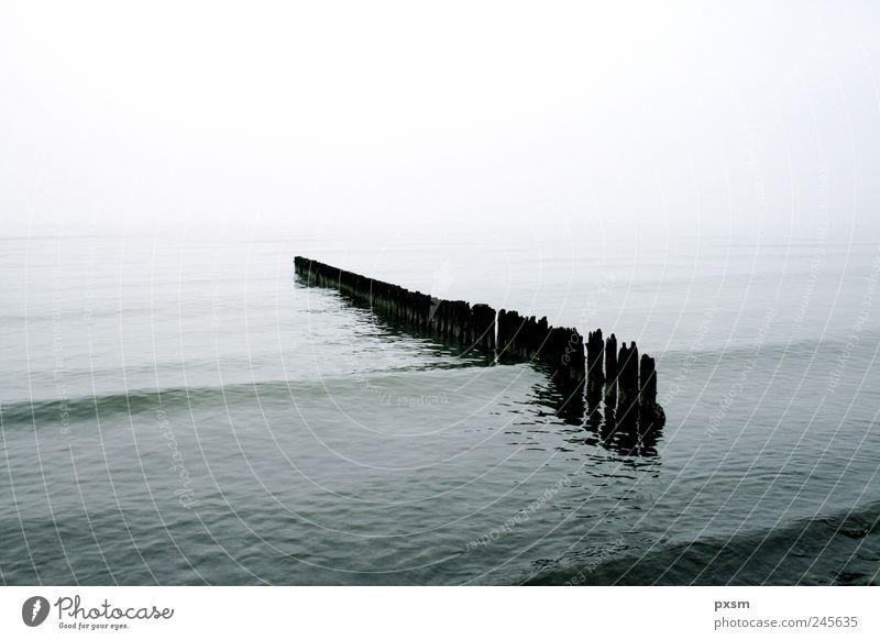 Natur Wasser weiß Strand Meer schwarz Ferne Holz grau träumen Umwelt Stimmung Wellen Nebel Horizont Europa