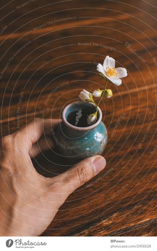 ein blümlein Mensch Hand niedlich Blume Vase Tisch stoppen Blüte klein Dekoration & Verzierung Natur Geschenk Holztisch Blumenvase Freude Farbfoto Außenaufnahme