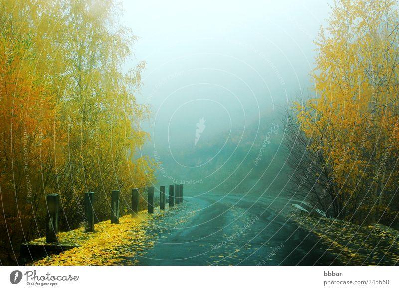 Landschaft einer Schnellstraße am nebligen Herbstmorgen Ferien & Urlaub & Reisen Tourismus Ausflug Ferne Sightseeing Umwelt Natur Pflanze Klima Klimawandel