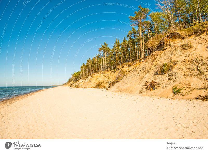 Strand an der polnischen Ostseeküste Ferien & Urlaub & Reisen Sand Riff Tourismus wild Düne Baum leer weit Einsamkeit Karibisches Meer Naturschutzgebiet
