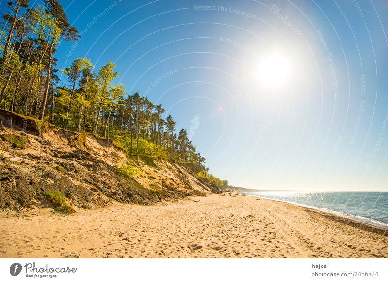 wilde Ostseeküste in Polen Ferien & Urlaub & Reisen Strand Sand Riff blau gelb Tourismus dünen bäume einsam natürlich meer sommer urlaub ferien unberührt polen